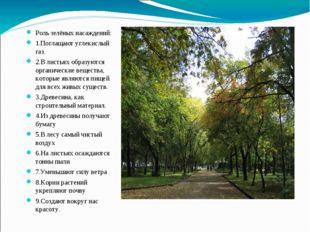 Роль зелёных насаждений: 1.Поглащают углекислый газ. 2.В листьях образуются о