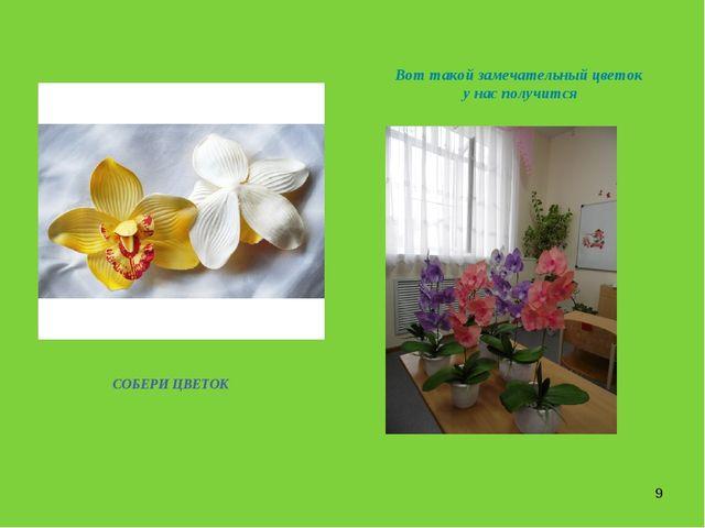 * СОБЕРИ ЦВЕТОК Вот такой замечательный цветок у нас получится