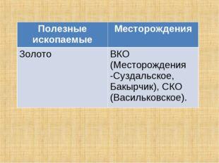 Полезные ископаемыеМесторождения ЗолотоВКО (Месторождения -Суздальское, Бак