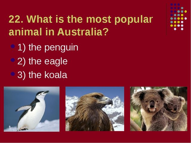 22. What is the most popular animal in Australia? 1) the penguin 2) the eagle...