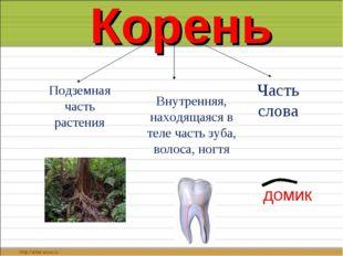 Корень Подземная часть растения Внутренняя, находящаяся в теле часть зуба, в