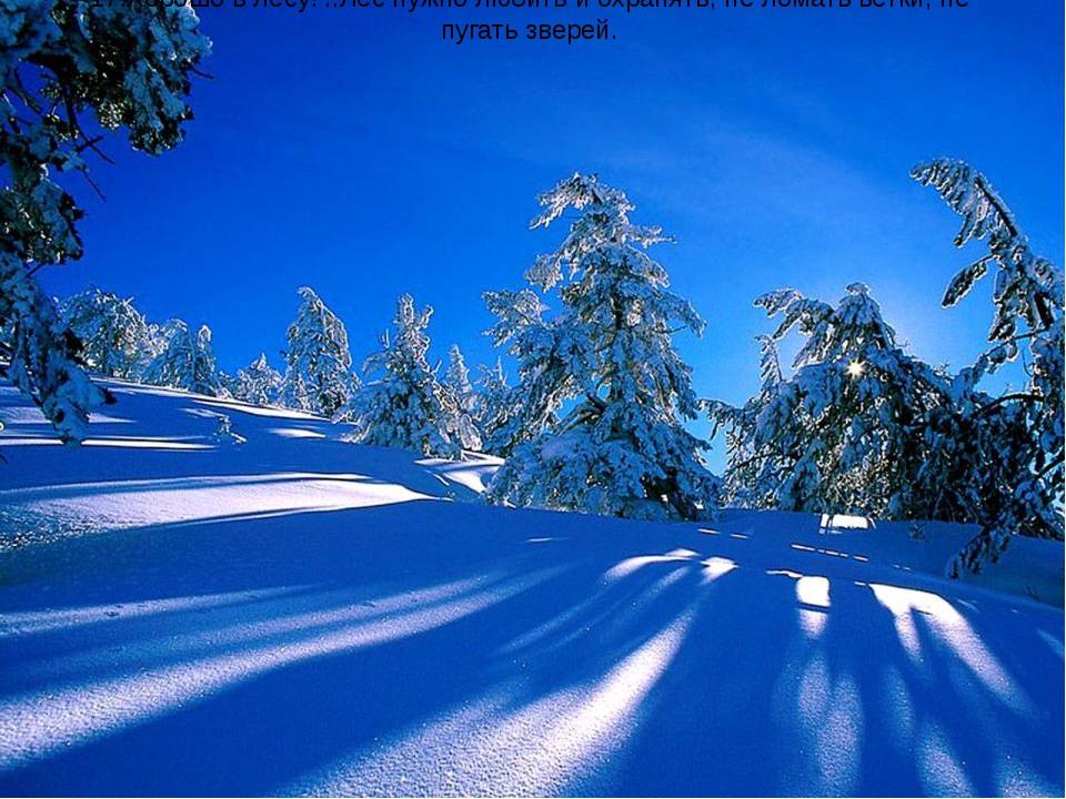 17.Хорошо в лесу! ..Лес нужно любить и охранять, не ломать ветки, не пугать з...