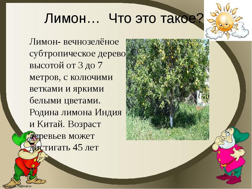Лимон… Что это такое? Лимон- вечнозелёное субтропическое дерево высотой от 3...