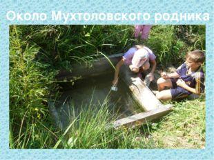Около Мухтоловского родника