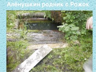 Алёнушкин родник с.Рожок