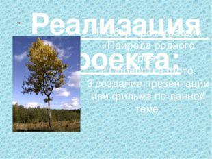 1. Сбор фотографий «Природа родного края». 2.Обработка фото. 3.создание презе