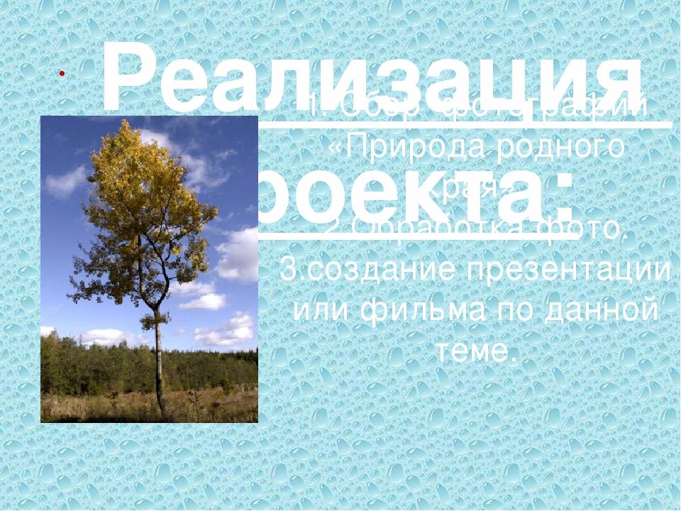 1. Сбор фотографий «Природа родного края». 2.Обработка фото. 3.создание презе...
