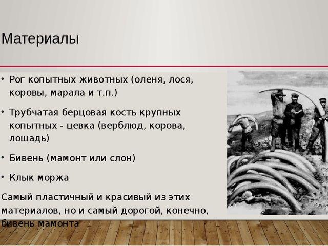 Материалы Рог копытных животных (оленя, лося, коровы, марала и т.п.) Трубчата...