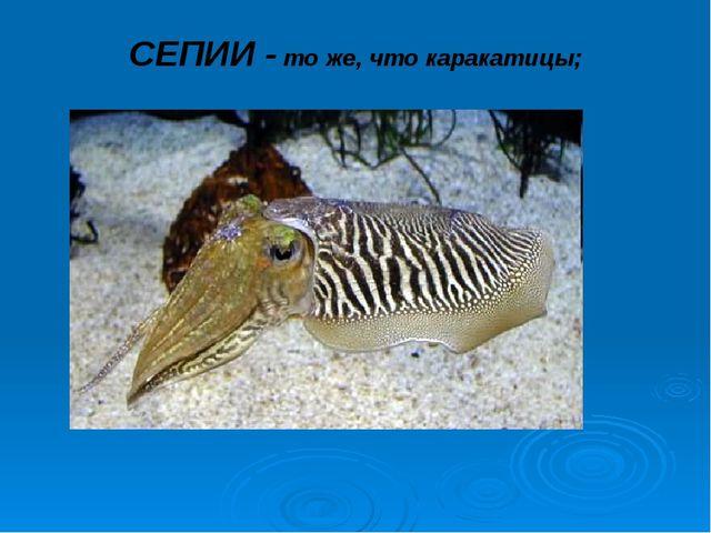 СЕПИИ - то же, что каракатицы;