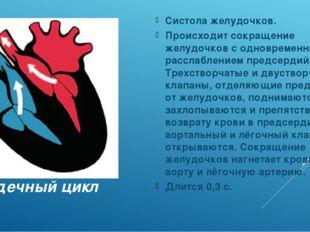 Сердечный цикл Систола желудочков. Происходит сокращение желудочков с одновре
