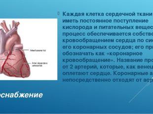 Кровоснабжение Каждая клетка сердечной ткани должна иметь постоянное поступле