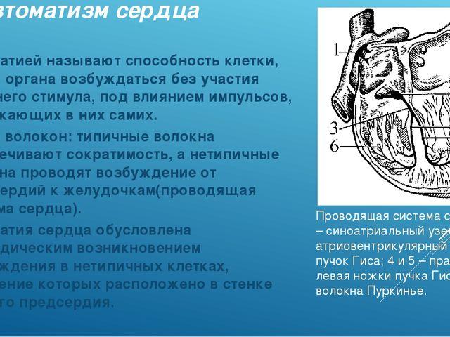 Автоматизм сердца Автоматией называют способность клетки, ткани, органа возбу...