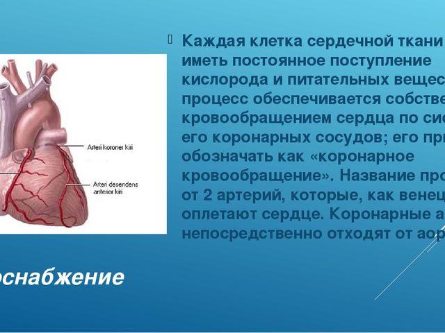 Кровоснабжение Каждая клетка сердечной ткани должна иметь постоянное поступле...