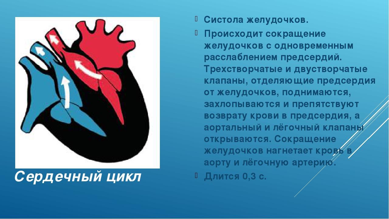 Сердечный цикл Систола желудочков. Происходит сокращение желудочков с одновре...