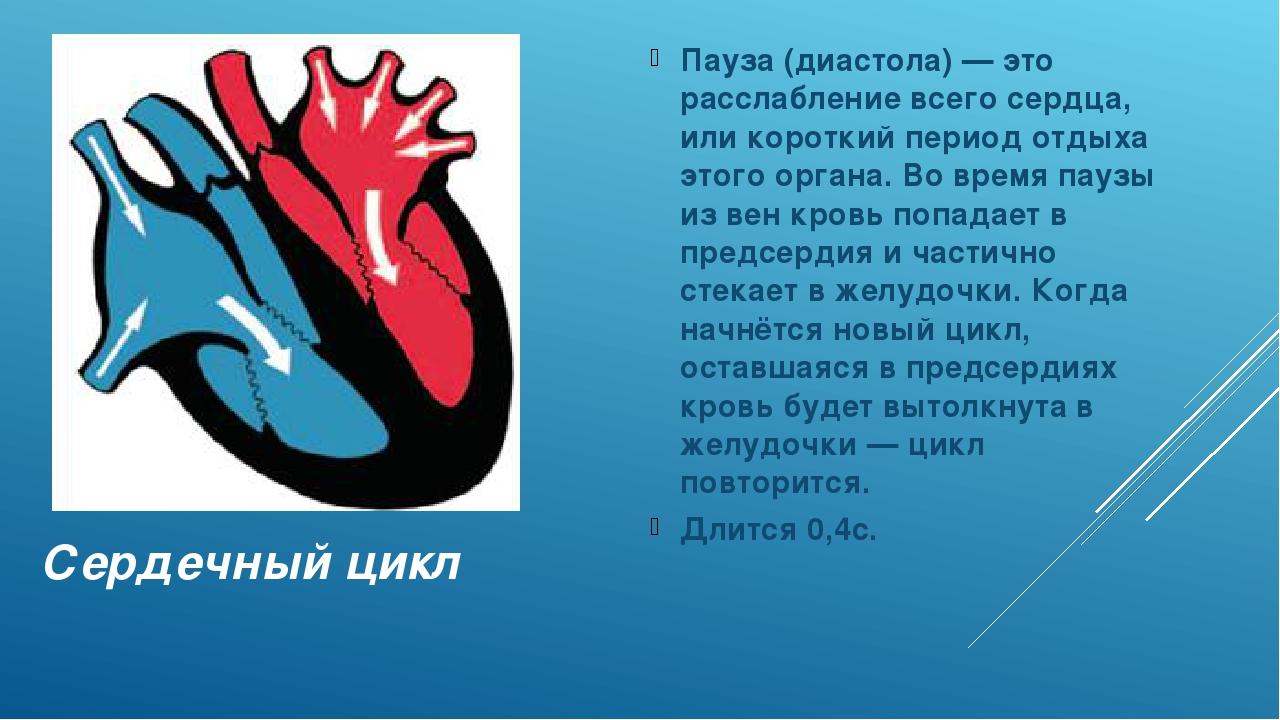 Сердечный цикл Пауза (диастола) — это расслабление всего сердца, или короткий...