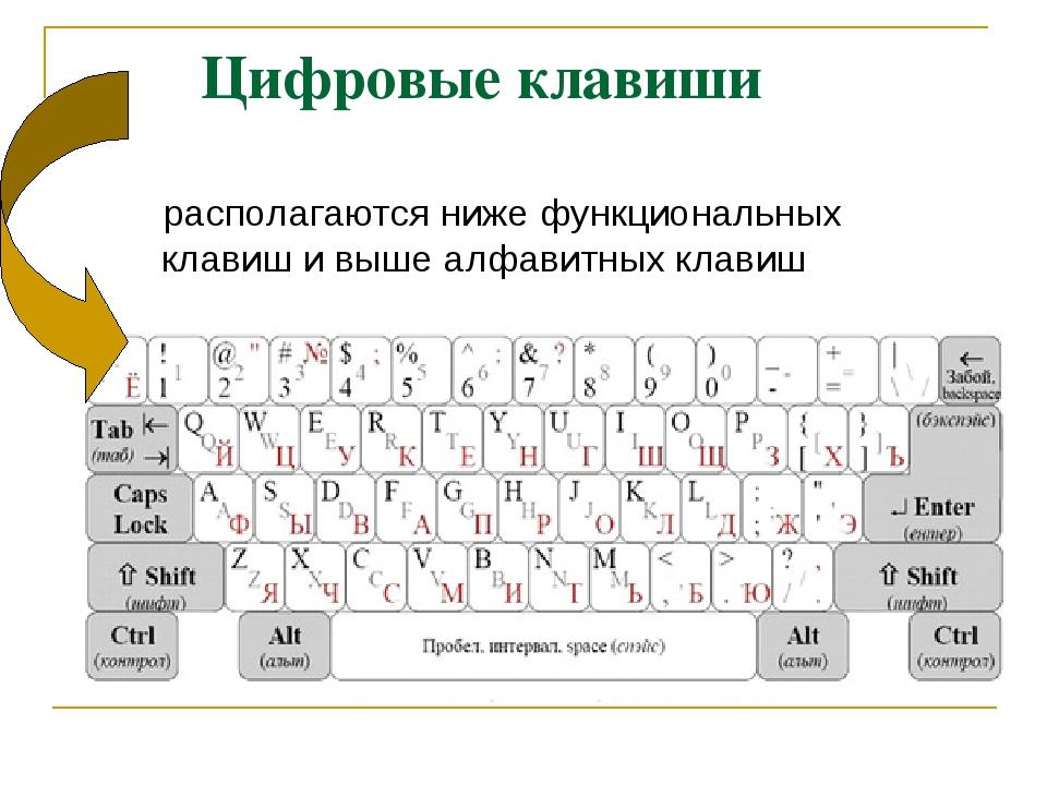 Цифровые клавиши располагаются ниже функциональных клавиш и выше алфавитных...