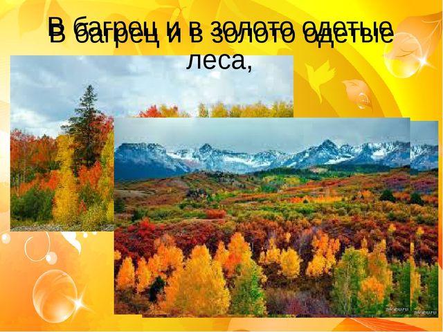 В багрец и в золото одетые леса, В багрец и в золото одетые леса,