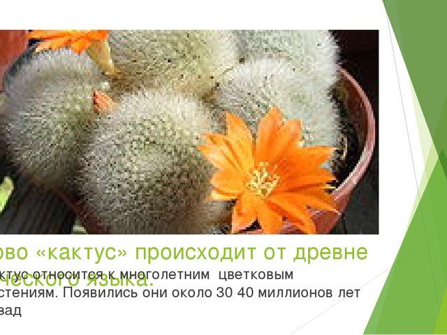 Слово «кактус» происходит от древне греческого языка. Кактус относится к мног...