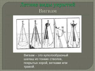 Вигвам – это куполообразный шалаш из тонких стволов, покрытых корой, ветками