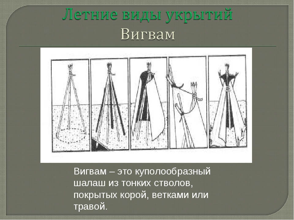 Вигвам – это куполообразный шалаш из тонких стволов, покрытых корой, ветками...