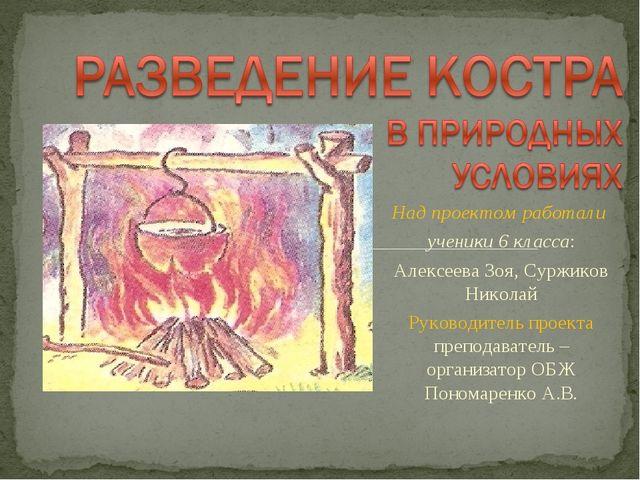 Над проектом работали ученики 6 класса: Алексеева Зоя, Суржиков Николай Руков...