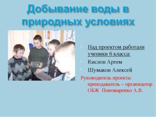 Над проектом работали ученики 6 класса: Кислов Артем Шумаков Алексей Руководи