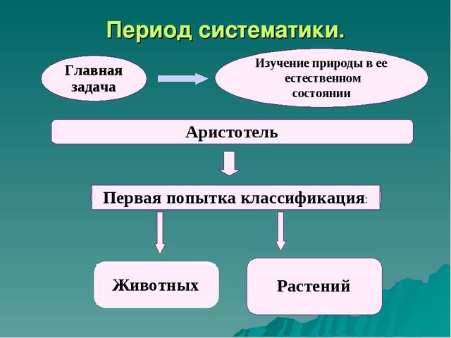 Период систематики.