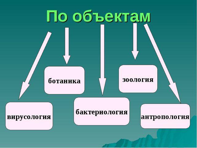 По объектам вирусология бактериология ботаника зоология антропология