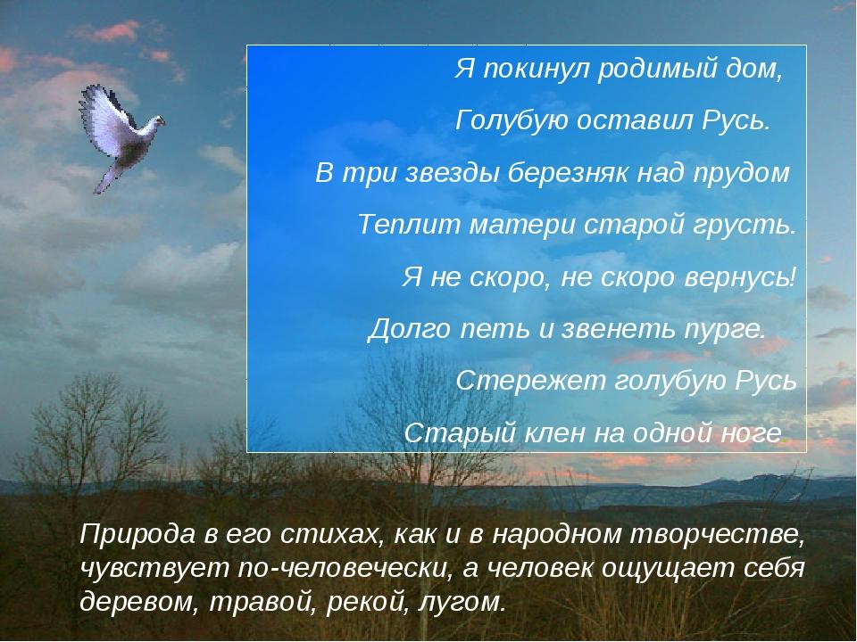 Природа в его стихах, как и в народном творчестве, чувствует по-человечески,...