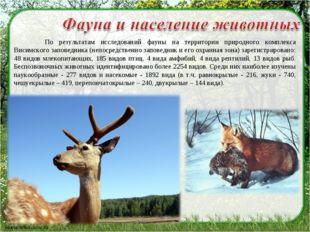 По результатам исследований фауны на территории природного комплекса Висимск