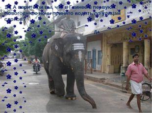 14. А верите ли вы, что в Гвинее в первую Новогоднюю ночь принято водить по у