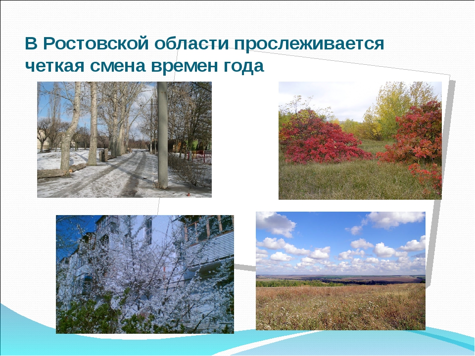 В Ростовской области прослеживается четкая смена времен года