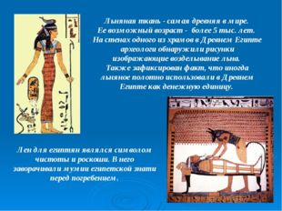 Льняная ткань - самая древняя в мире. Ее возможный возраст - более 5 тыс. лет