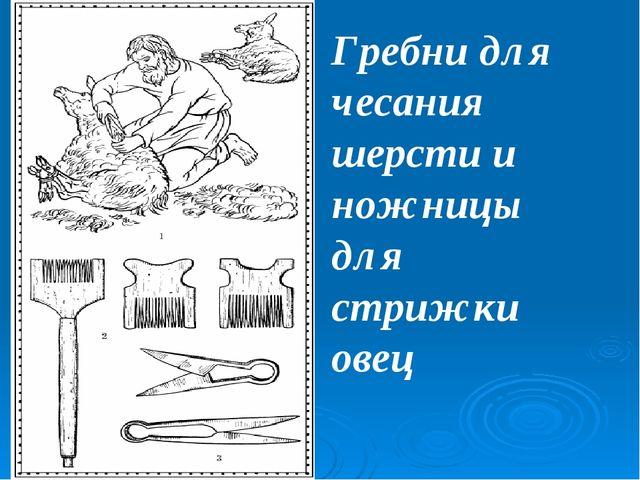 Гребни для чесания шерсти и ножницы для стрижки овец