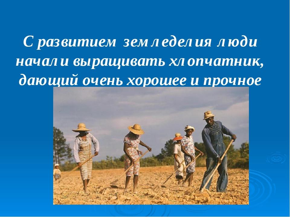 С развитием земледелия люди начали выращивать хлопчатник, дающий очень хороше...