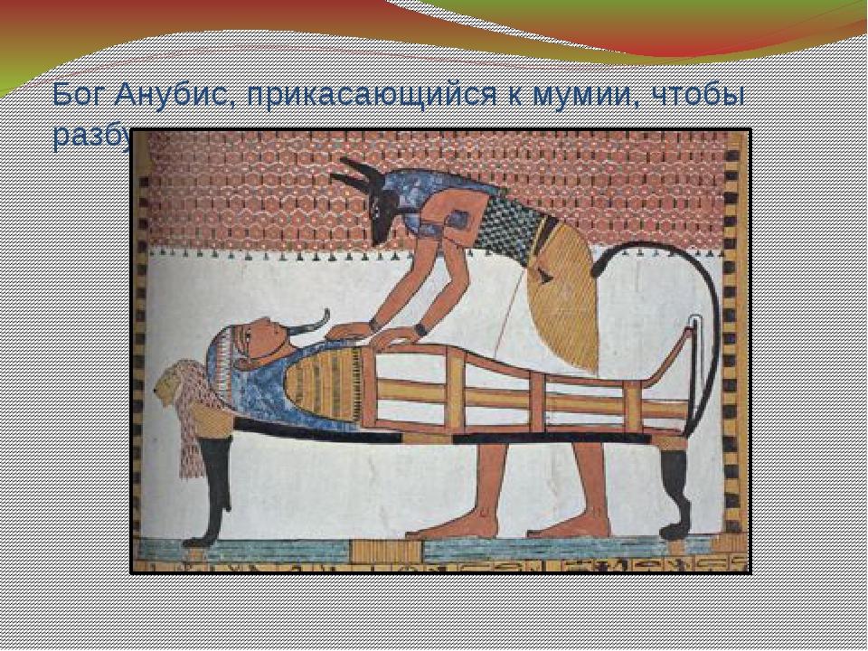 Бог Анубис, прикасающийся к мумии, чтобы разбудить ее.