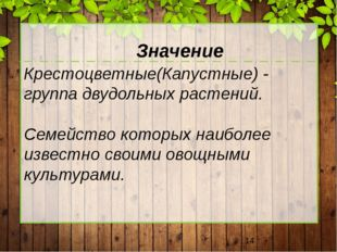 Крестоцветные(Капустные) - группа двудольных растений. Семейство которых наи