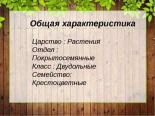 Царство : Растения Отдел : Покрытосемянные Класс : Двудольные Семейство: Кре