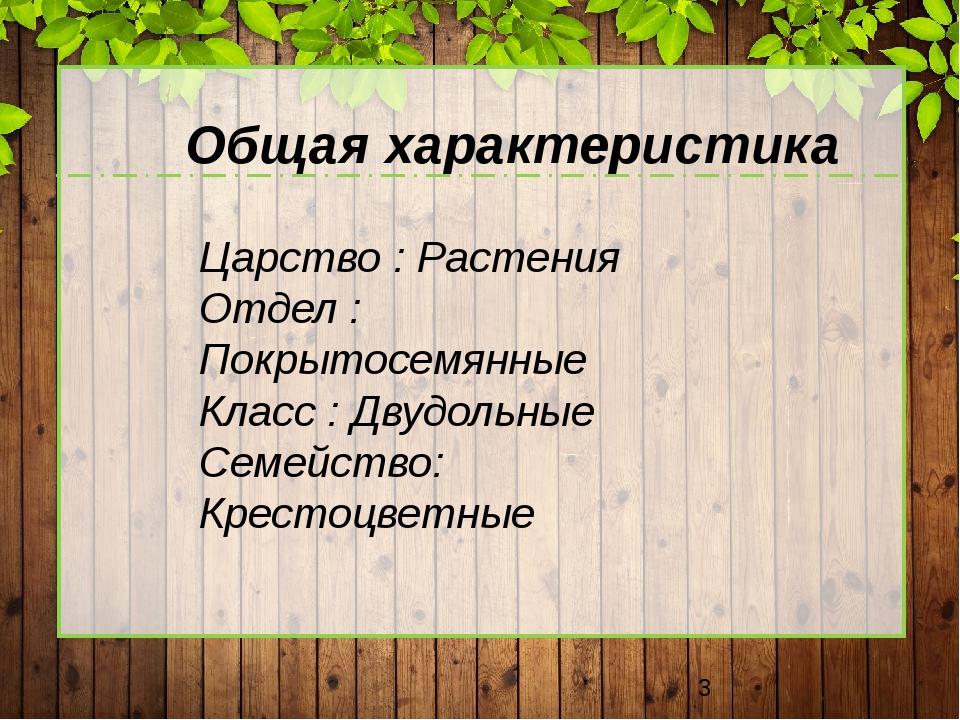 Царство : Растения Отдел : Покрытосемянные Класс : Двудольные Семейство: Кре...