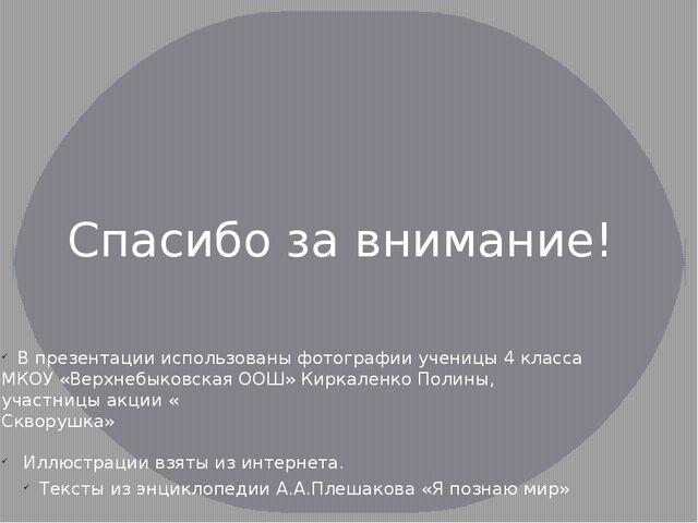 В презентации использованы фотографии ученицы 4 класса МКОУ «Верхнебыковская...