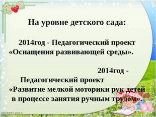 На уровне детского сада: 2014год - Педагогический проект «Оснащения развиваю