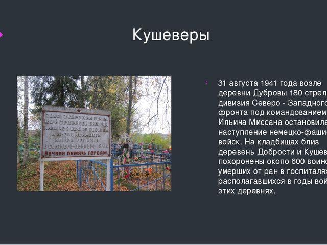 Кушеверы 31 августа 1941 года возле деревни Дубровы 180 стрелковая дивизия С...