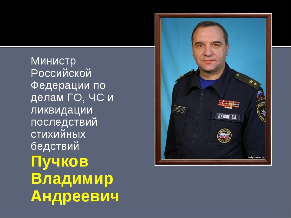 Министр Российской Федерации по делам ГО, ЧС и ликвидации последствий стихийн...