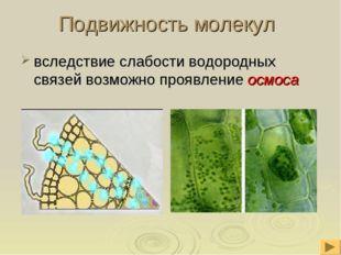 Подвижность молекул вследствие слабости водородных связей возможно проявление