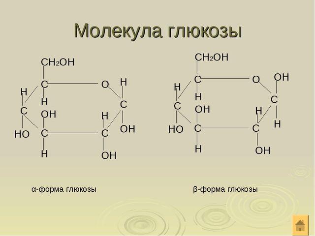 Молекула глюкозы α-форма глюкозы СН2ОН Н Н Н Н ОН НО Н ОН ОН β-форма глюкозы