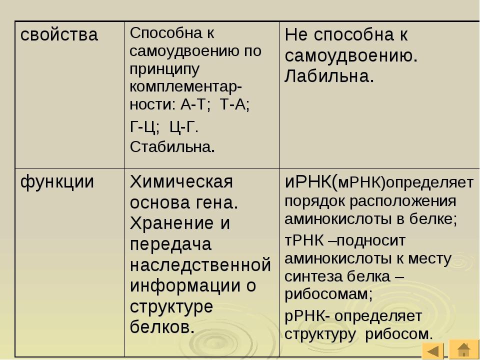 свойстваСпособна к самоудвоению по принципу комплементар-ности: А-Т; Т-А; Г-...
