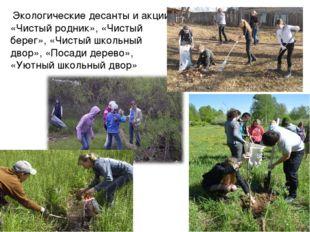 Экологические десанты и акции «Чистый родник», «Чистый берег», «Чистый школь
