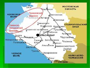 Таманско-Запорожский заказник Приазовский заказник