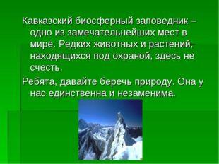 Кавказский биосферный заповедник – одно из замечательнейших мест в мире. Редк