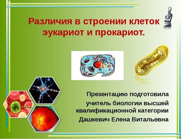 Различия в строении клеток эукариот и прокариот. Презентацию подготовила учит...